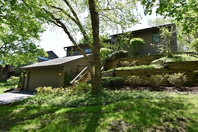 St. Charles Single Family Home For Sale: 1805 Shoreline Drive