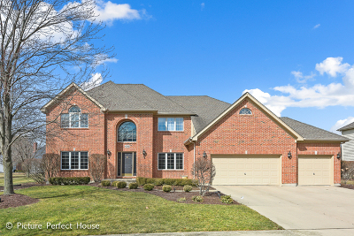 Naperville Single Family Home New: 4316 Camelot Circle