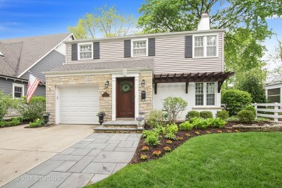 Arlington Heights Single Family Home For Sale: 628 South Bristol Lane