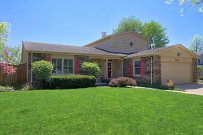Libertyville Single Family Home Price Change: 521 Sandy Lane