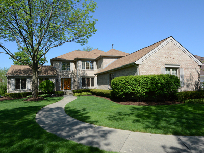 Palatine Single Family Home For Sale: 1066 South Hiddenbrook Trail