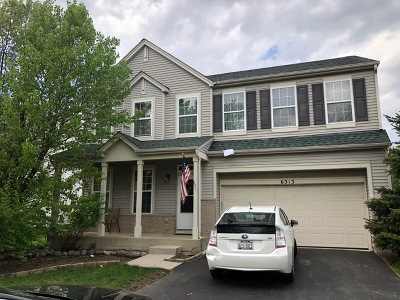 Plainfield Single Family Home New: 6313 Southridge Drive