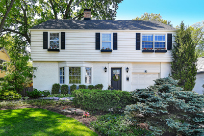 Hinsdale Single Family Home New: 314 Ravine Road