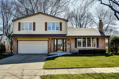 Arlington Heights Single Family Home For Sale: 1619 South Kaspar Avenue