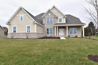 Kane County Single Family Home New: 39w660 Norton Lake Drive