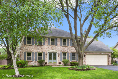 Naperville Single Family Home New: 25w066 Setauket Avenue