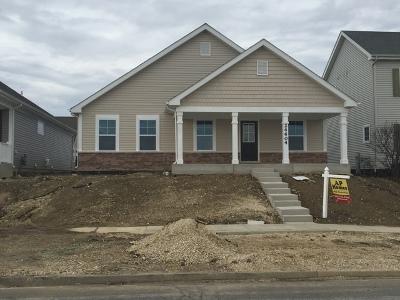 Plainfield Single Family Home New: 12528 South Kildare Avenue