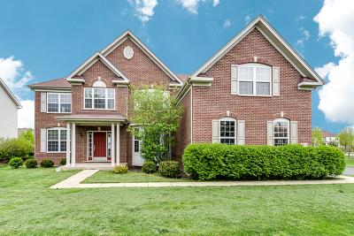 Aurora Single Family Home New: 1164 Deerpath Road