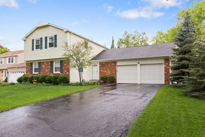 Buffalo Grove Single Family Home For Sale: 30 Timber Hill Road