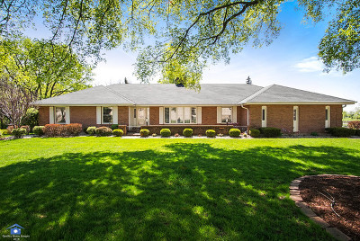 Lemont Single Family Home For Sale: 20w441 South Frontage Road