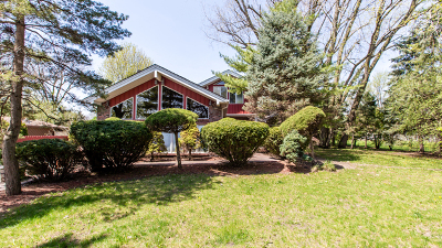 Mount Prospect Single Family Home For Sale: 1108 North Elmhurst Road