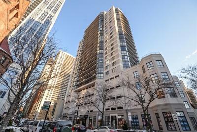 Chicago IL Condo/Townhouse New: $285,000