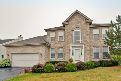 Hoffman Estates Single Family Home For Sale: 5351 Galloway Drive
