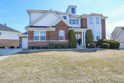 Schaumburg Single Family Home For Sale: 1345 Grantham Drive