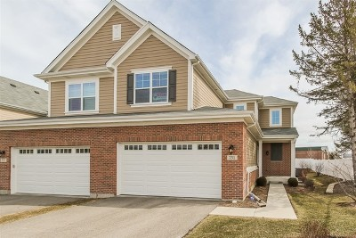 Palatine Condo/Townhouse For Sale: 751 North Winchester Drive