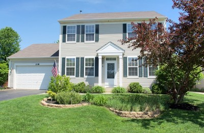 Oswego Single Family Home For Sale: 208 Brompton Court