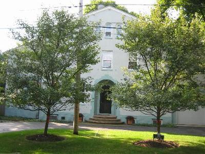 Lake Forest Single Family Home For Sale: 359 Scott Street