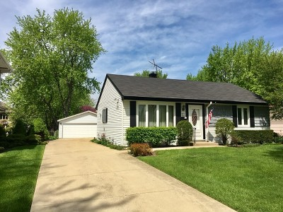 Mount Prospect Single Family Home For Sale: 308 North William Street