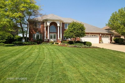 Tinley Park Single Family Home For Sale: 17924 Golden Pheasant Drive