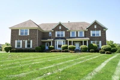 Barrington Single Family Home For Sale: 813 Magnuson Court
