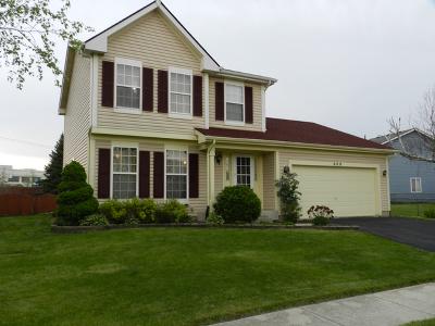 Bolingbrook Single Family Home New: 600 Lakewood Farms Drive