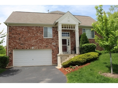 Orland Park Condo/Townhouse New: 9413 West 140th Street