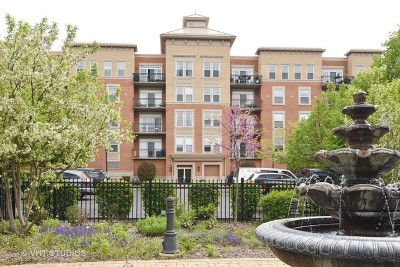 Palatine Condo/Townhouse For Sale: 190 West Johnson Street #301