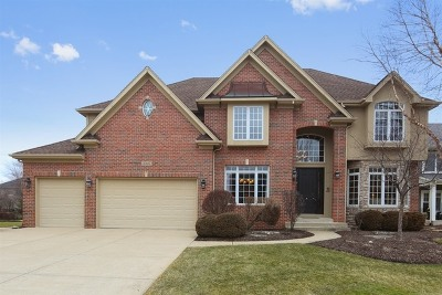 Naperville Single Family Home New: 3347 Lapp Lane