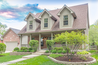 Downers Grove Single Family Home For Sale: 4917 Stanley Avenue