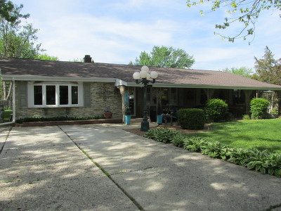 New Lenox Single Family Home For Sale: 959 Shirley Parkway