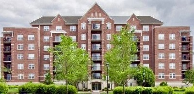 Palatine Condo/Townhouse For Sale: 410 West Mahogany Court #303