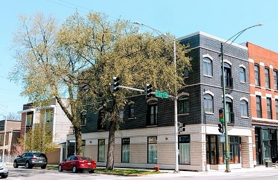 Chicago Multi Family Home New: 507 North Oakley Boulevard