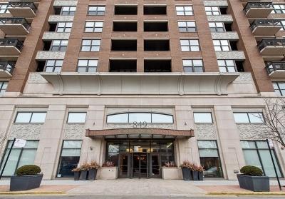 Chicago IL Condo/Townhouse New: $785,000
