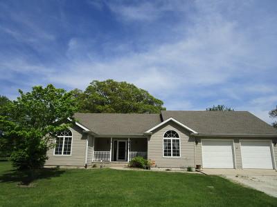 Braidwood Single Family Home For Sale: 34711 South Center Street