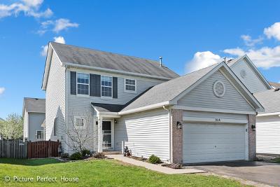 Joliet Condo/Townhouse New: 3018 Nantucket Drive