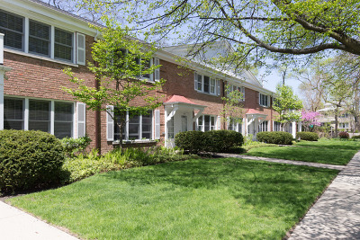 Wilmette Condo/Townhouse For Sale: 505 3rd Street