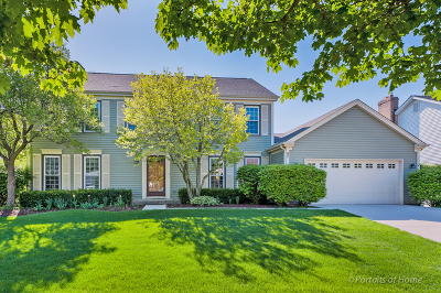Wheaton Single Family Home New: 87 Venetian Way Circle