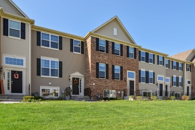 South Elgin Condo/Townhouse New: 1639 Deer Pointe Drive #1042