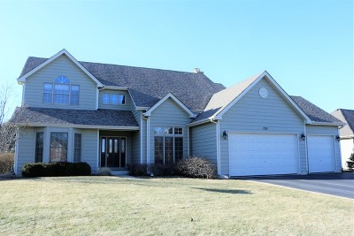 Algonquin Single Family Home For Sale: 700 Bluestem Lane