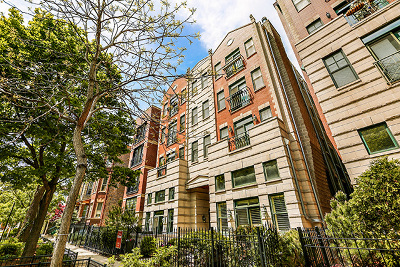Condo/Townhouse New: 860 West Buckingham Place #2W