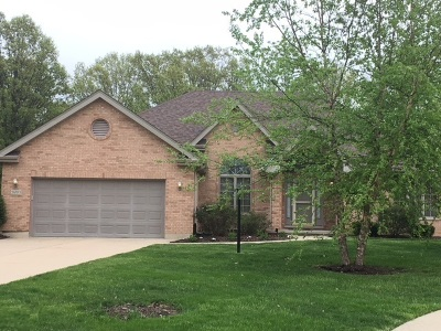 Channahon Single Family Home For Sale: 26553 South Overland Drive