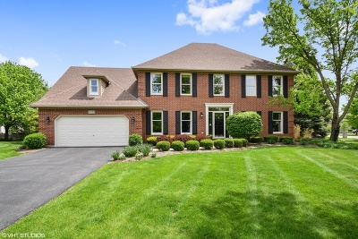 Naperville Single Family Home New: 1123 Conan Doyle Road