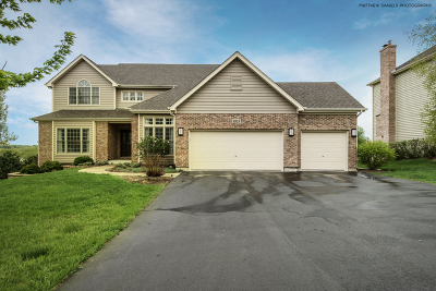 Crystal Lake Single Family Home For Sale: 3513 Braberry Lane