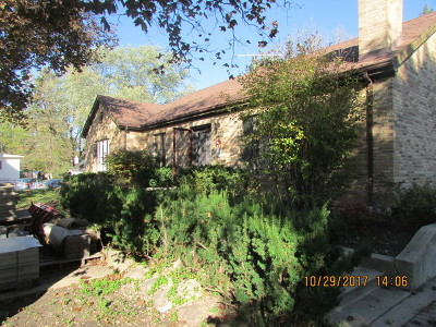 Palatine Single Family Home For Sale: 1675 North Hicks Road