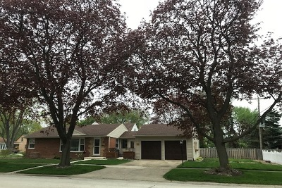 Mount Prospect Single Family Home For Sale: 201 North Pine Street