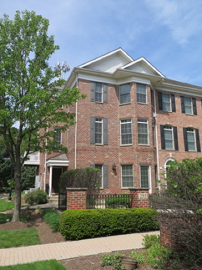 Naperville Condo/Townhouse New: 255 Box Car Avenue