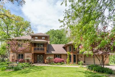 Sugar Grove Single Family Home For Sale: 3s840 Thornapple Tree Road