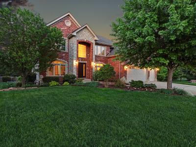 Plainfield Single Family Home For Sale: 13009 Silverleaf Court