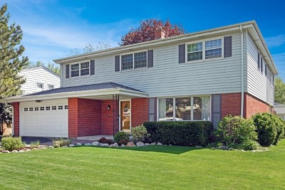 Arlington Heights Single Family Home For Sale: 15 South Donald Avenue