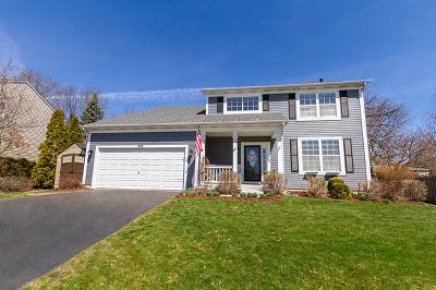 South Elgin Single Family Home New: 528 Oakwood Lane